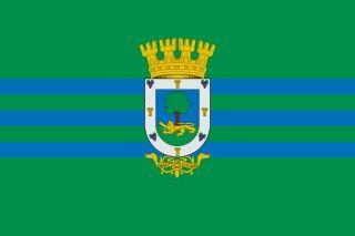 Bandera la comuna de La Florida , Santiago de Chile.