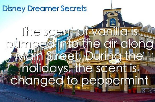 Disney world pumps flavored scents down Main Street and changes during Christmas time. That is definitely disney  trivia