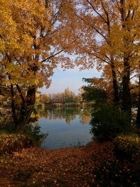 Lucky Lake