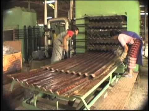 Video sobre las maravillosas propiedades y aplicaciones del Bambú.