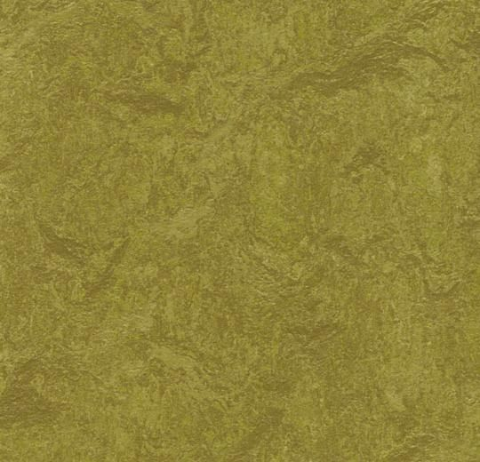 """Olive Green 79"""" Wide Marmoleum Real"""