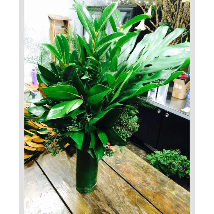 All green floral arrangements from www.lillipollen.com.au #flowers #eventflowers #greenblooms #weddinginspo #weddinginspiration #weddingflorals #brisbaneflorist #flowersbrisbane