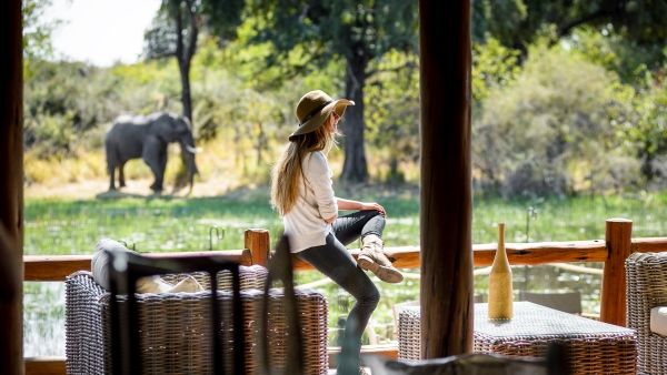 Embark on the ultimate African adventure with Air Charter Service      #safari #Africa