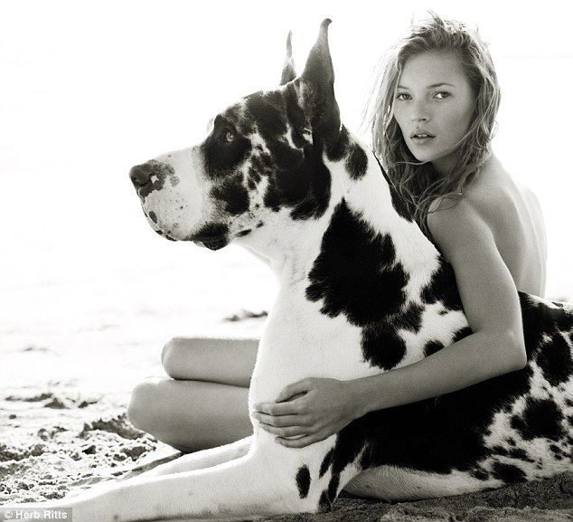 Herb Ritts 1997 | Kate Moss & harlequin Great Dane | Vogue