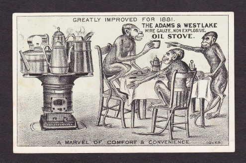 Monkeys Use The Adams Westlake Oil Stove