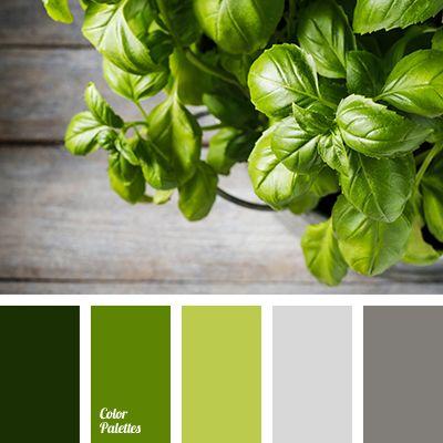 Color Palette #3331