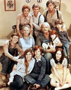 The Waltons...As a kid, ya either loved this show or hated it....I was never a fan! But when I got older I watched it and saw it was about family values and traditions!