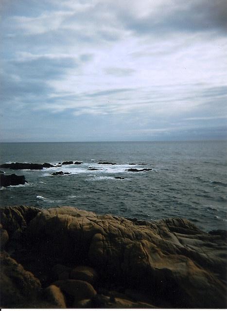 someday, i will return. #searanch #ocean #holga
