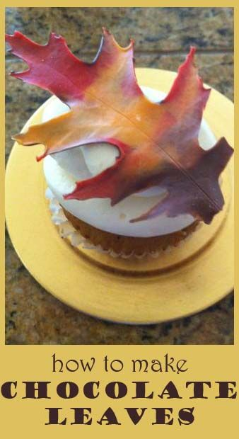 how to make chocolate leaves such a lovely touch to an autumn birthday cake wedding cake or special dessert