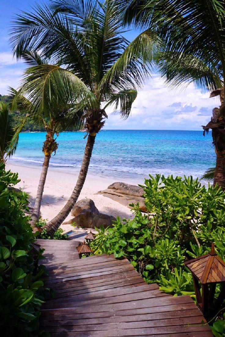 Anse Intendance, Seychelles Ailleurs communication, www.ailleurscommunication.fr…