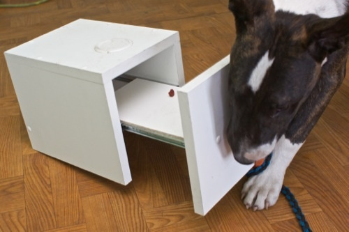 Toy Dog Macig Box (tm) - 1 drawer. Available to order online now. Hand made toy, easy to clean... a lot of fun for a dog and owner. We just made it a lot better than ever before. Interested? Drop me a line to biuro@wesolalapka.pl