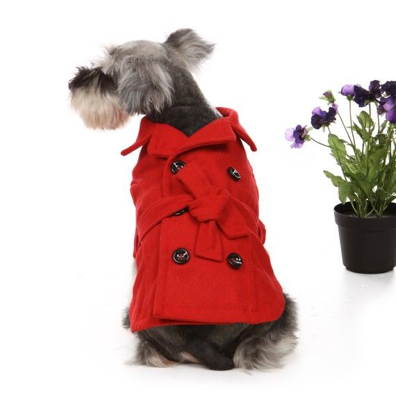 Adorable!!: Doggie, Red Trench Coat, Pet Dogs, Pets 3, Trench Coats, Dog Coats, Dog Stuff