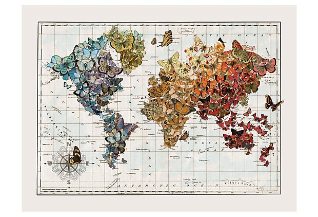 Butterfly Migration Vintage Map on Here's a nature-inspired take on world geography: This colorful, limited-edition map illustrates butterfly migration routes, so you can track which ones are flying your way.