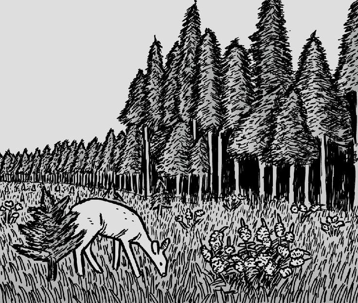 Deer grazes near edge of Mount St. Helens blast zone..  Image from Stuart McMillen's comic Type III.
