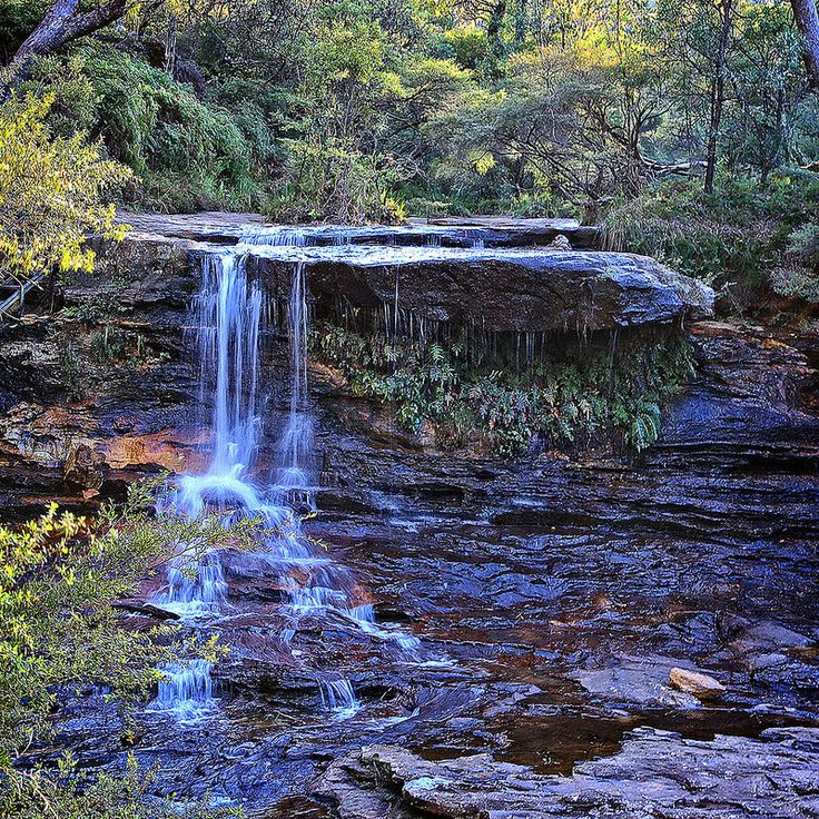 Wentworth Falls in the Blue Mountains, NSW.