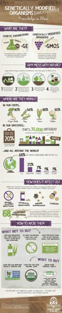 great article on why you should eat more organic foods and avoid gmo!