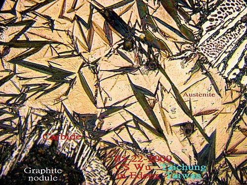 FCD ----2009   Color Metallography @ leometwu的部落格 :: 痞客邦 PIXNET ::