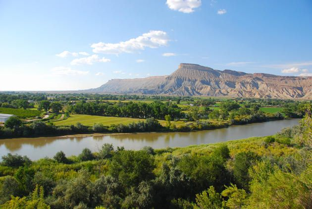 Best 25 grand junction colorado ideas on pinterest colorado national monument monument for Bookcliff gardens grand junction colorado