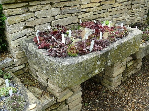 How To Make A Container Rock Garden