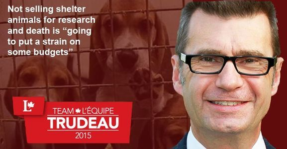 Liberal Party of Canada - Stand against ANIMAL TESTING             thepetitionsite.com