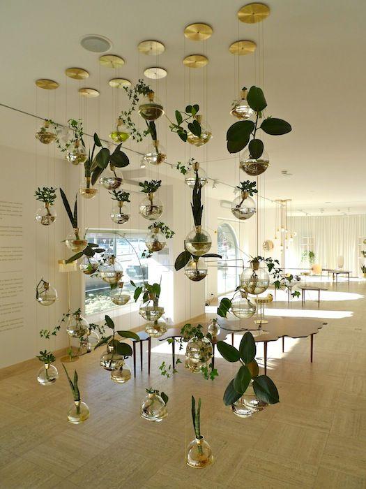 svenskt tenn - hanging plants