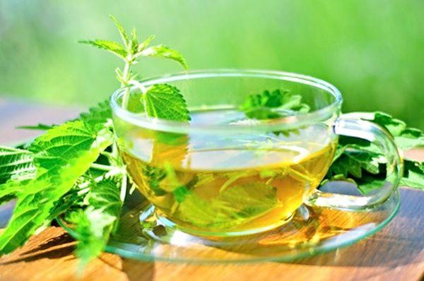 Kopřivový čaj z lístků mladých kopřiv