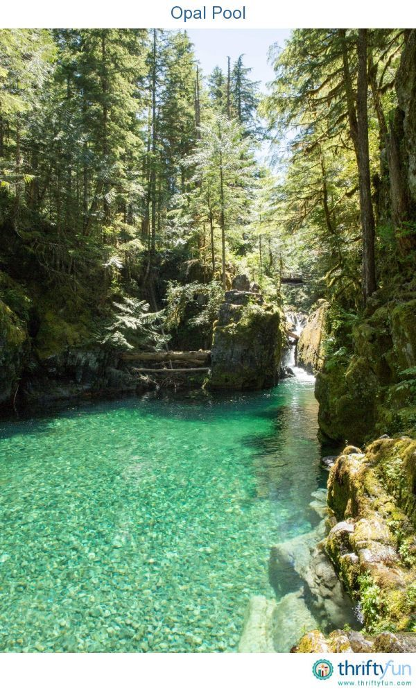 Last weekend, my family and I had the opportunity to hike in the Opal Creek Scenic Area and Wilderness. It is located east of Salem, in the Willamette National Forest. Opal Creek runs through thousands of acres of protected old growth forest, crisscrossed with over 30 miles of #hiking trails.