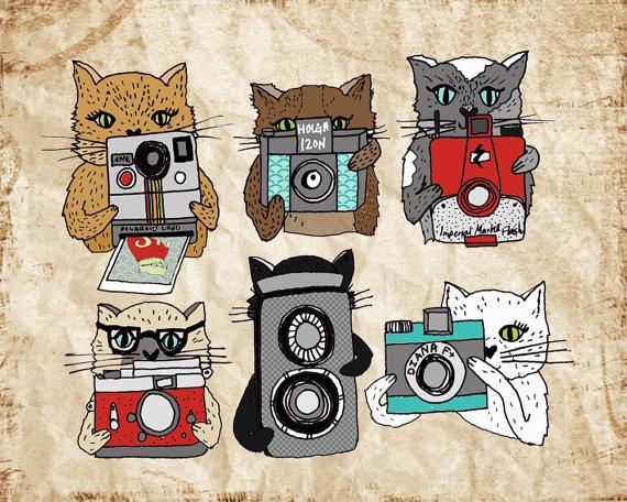 Cats Love Cameras print // Paper Sparrow