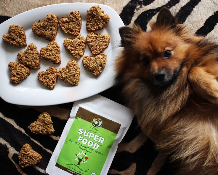 Today is #NationalCookForYourPetsDay! So naturally, we had to whip up some #superfood dog treats for our poochies!   To make simply preheat the oven to 350 degrees. In a large bowl mix together 3 cups old fashioned oats, 2 ripe mashed bananas, 1/4 cup peanut butter, 1/4 cup melted coconut oil and a scoop of #BokuSuperfood until dough forms. Using a rolling pin, roll the dough to 1/4-inch thickness and cut out desired shapes. Bake until the edges are golden brown, about 15 minutes. #BokuHack