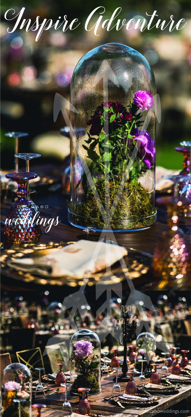 Make your vision a reality! Have your own theme wedding! Click on the photo and visit our website!