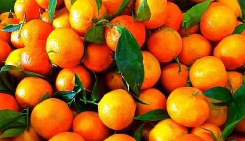 Calabria: #Clementine  #Coldiretti: Da Sibari a Gioia Tauro il prezzo offerto agli agricoltori è... (link: http://ift.tt/2gskRMM )