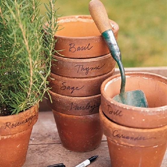 If i used the smaller terracotta pots this might work in for Terracotta works pots