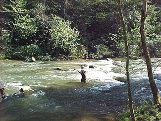 22 best trout fishing north georgia images on pinterest for Fly fishing north georgia