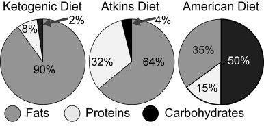 Blog: My six week ketogenic diet experiment