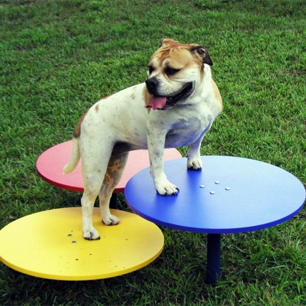 Stepping Up Dog Playground Dog Park Equipment Dog Daycare