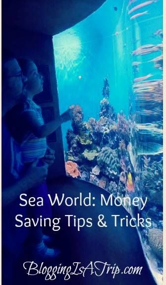 SeaWorld Tips and Tricks Orlando Location #Travel #Travel Tips http://bloggingisatrip.com/seaworld-tips-and-tricks/
