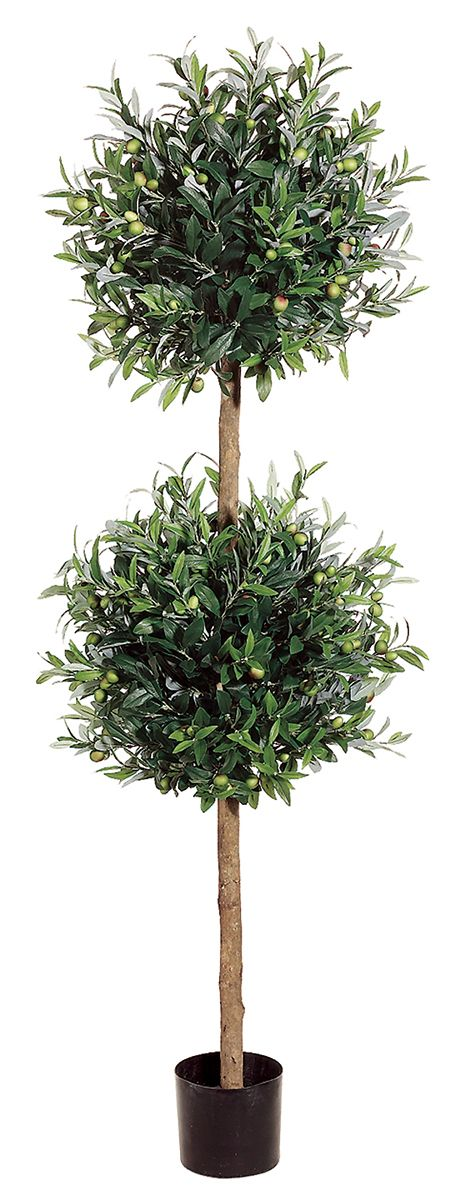 Double Ball Olive Topiary 5.5ft | Home decor | Pinterest