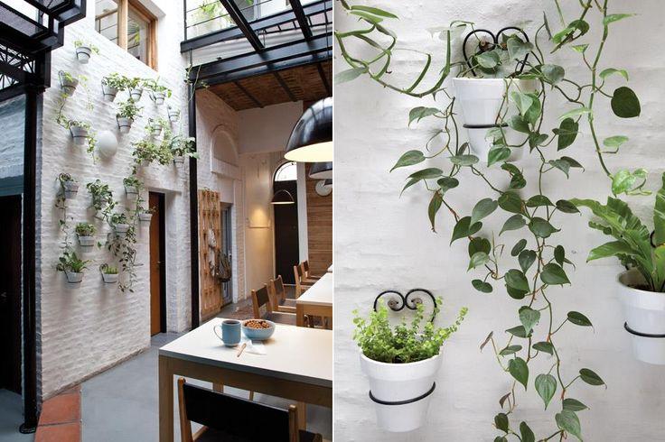 """En ese espacio, Lucía Ardissone, del estudio Bulla, desarrolló una instalación de paisajismo. """"Colocamos plantas de bajo mantenimiento que hacen referencia a la época de la casa. Es la reversión del jardín de la abuela, pensado para rockers"""".  /Magalí Saberian"""