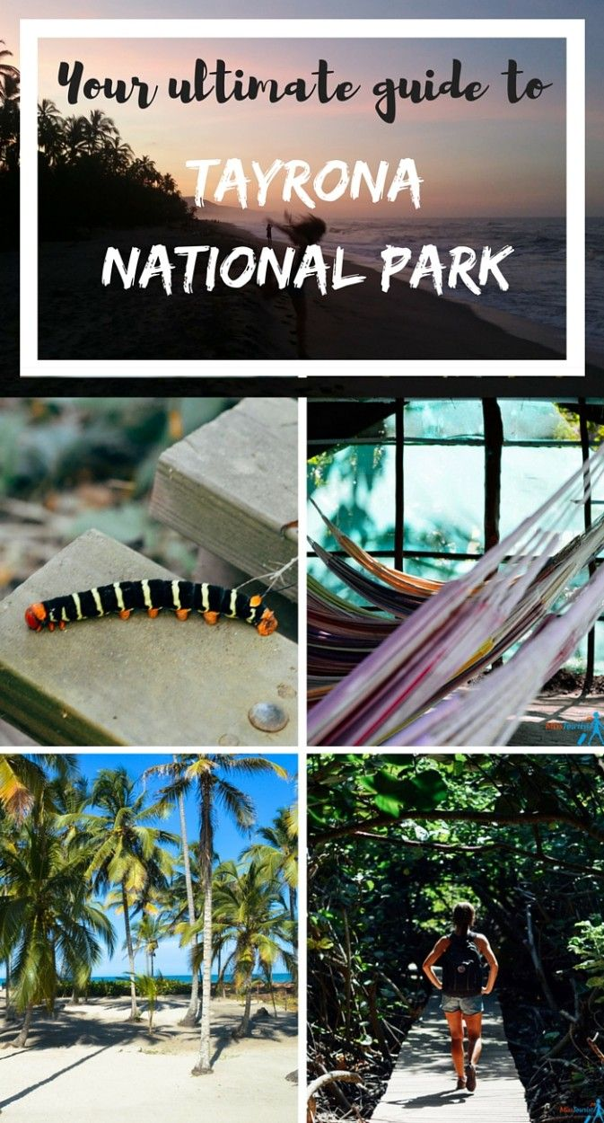 Your ultimate guide to Tayrona National Park Misstourist.com