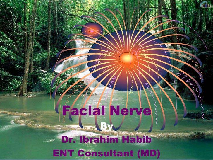 Facial nerve paralysis ppt