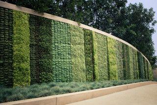 This vertical garden looks stunning