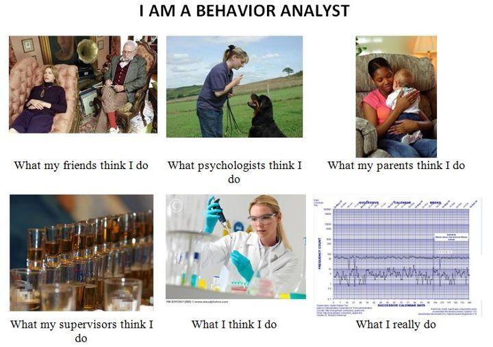 Behavior analyst onlineorg thank for