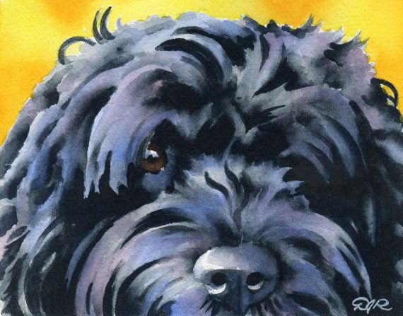 PORTUGUESE WATER Dog Art Print Signed by Artist DJ by k9artgallery, $12.50