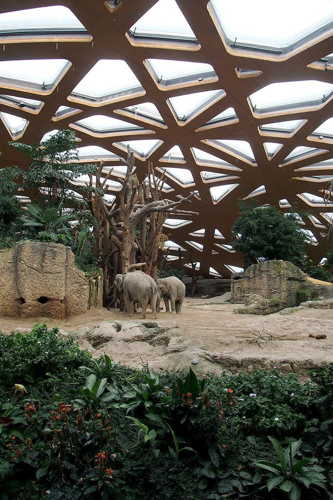 Elephant House at the Zurich Zoo by Markus Schietsch.