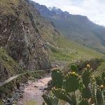 Short Inca Trail to Machu Picchu - Peru