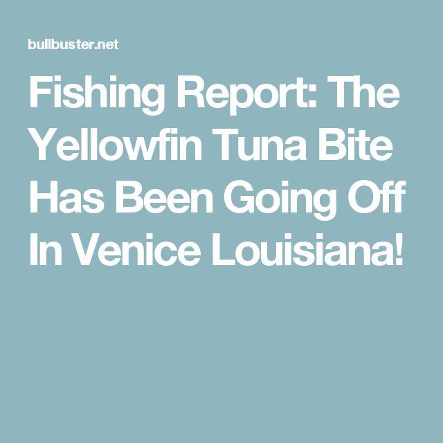 Fishing Report: The Yellowfin Tuna Bite Has Been Going Off In Venice Louisiana!