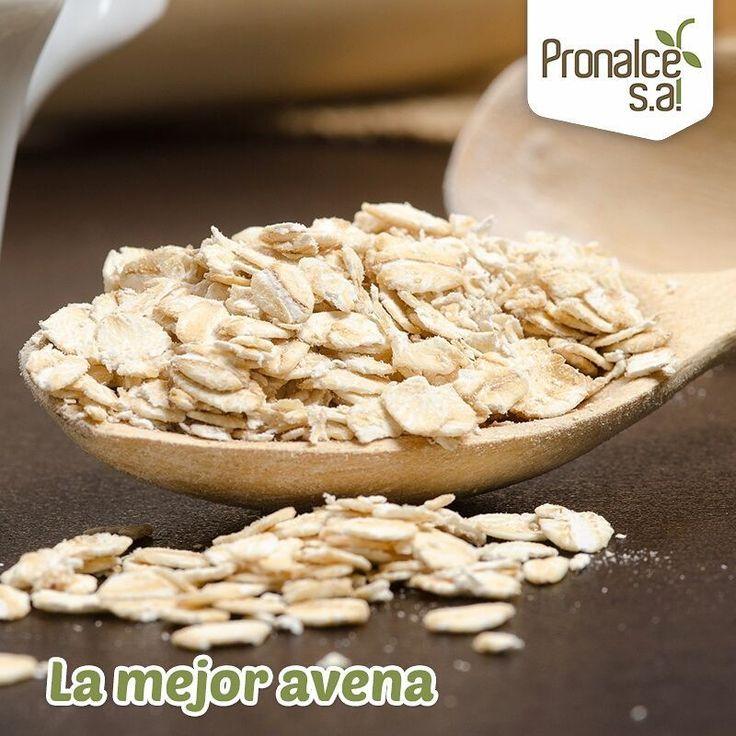 """La #AvenaPronalce  ha sido nombrada como la """"reina de los cereales"""", puesto que su contenido en proteínas, vitaminas, hidratos de carbono y nutrientes es mucho más rico que otros cereales comunes.    #Pronalce #Avena #Wheat #Trigo #Cereal #Granola #Fit #Oats #ComidaSaludable #Yummy #Delicious #Tasty #Instagood #Delicioso #Sano #HealthyFood #Breakfast #Protein #Nutrición #Cereales"""