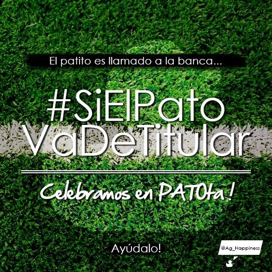 ... Celebramos en PATOta