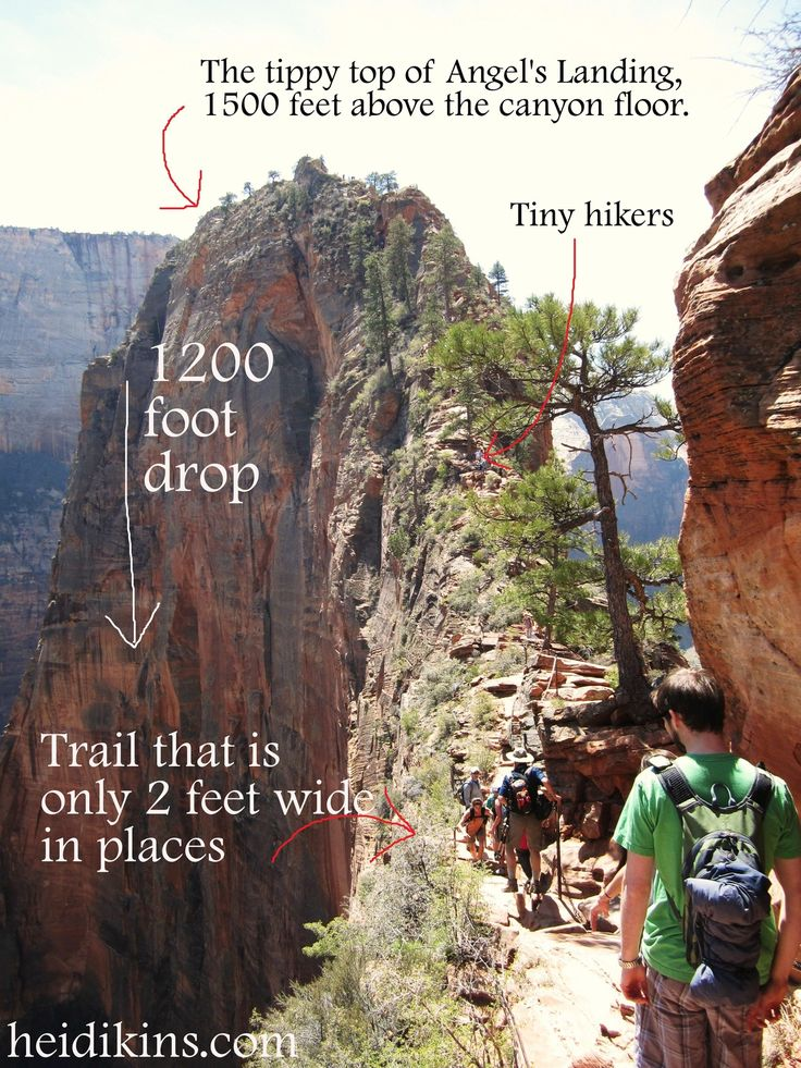My 13 yr old and my husband climbed this!! Angels Landing Zion National Park, Utah