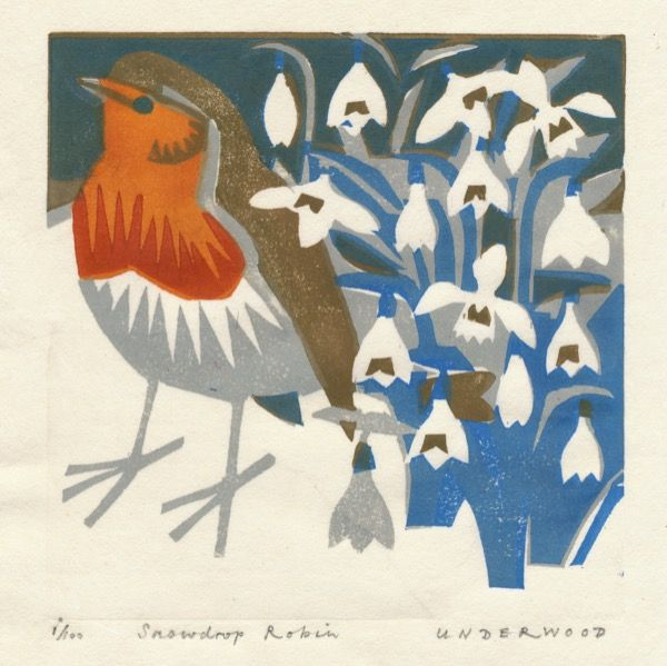 Snowdrop Robin, Woodblock print, by Matt Underwood